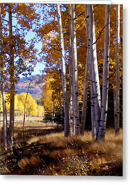 New Mexico Digital Greeting Cards - Autumn Paint Chama New Mexico Greeting Card by Kurt Van Wagner