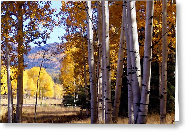 Autumn Paint Chama New Mexico Greeting Card by Kurt Van Wagner