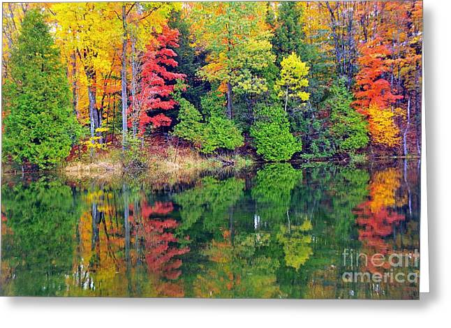 Fall Trees Greeting Cards - Autumn Paintbox Greeting Card by Terri Gostola