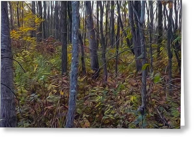 South Glengarry Greeting Cards - Autumn Panorama Greeting Card by Jacqueline Milner