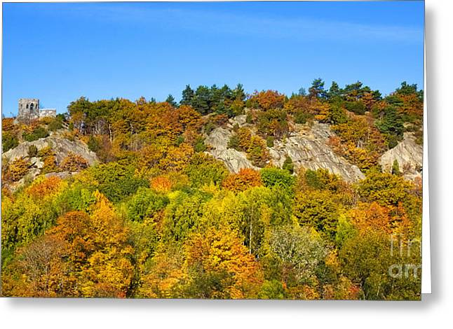 Autumn Scenes Photographs Greeting Cards - Autumn Panorama Greeting Card by Lutz Baar