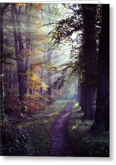 Crepuscular Rays Greeting Cards - Autumn Paradise Greeting Card by Mountain Dreams