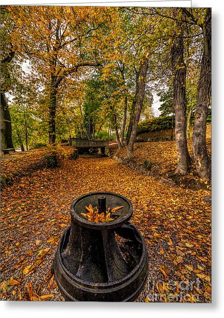 Ironwork Greeting Cards - Autumn Park Greeting Card by Adrian Evans