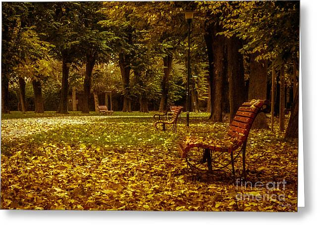 Empty Park Bench Greeting Cards - Autumn Park Greeting Card by Prints of Italy