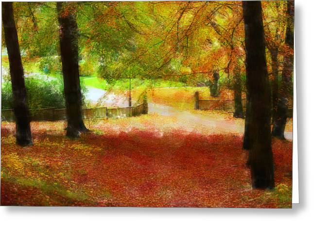 Fall Photos Mixed Media Greeting Cards - Autumn park with trees of beech Greeting Card by Toppart Sweden