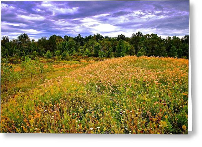 Quite Greeting Cards - Autumn Pasture Greeting Card by Frozen in Time Fine Art Photography