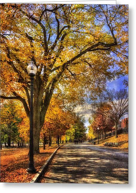 Fall Scenes Greeting Cards - Autumn Path - Boston Public Garden Greeting Card by Joann Vitali