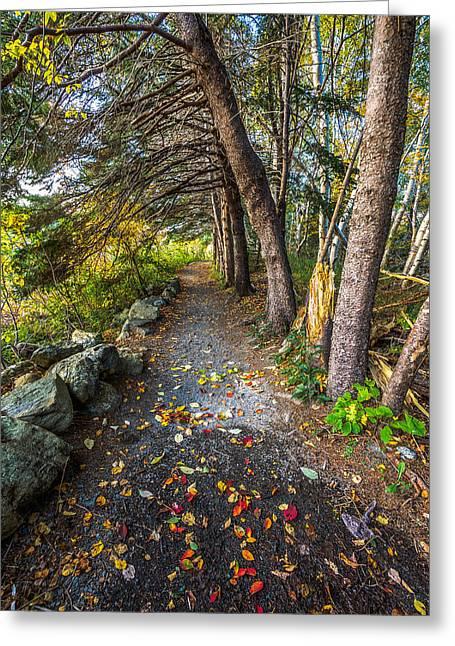 Autumn Greeting Cards - Autumn Path Manuals Trail Greeting Card by Gord Follett