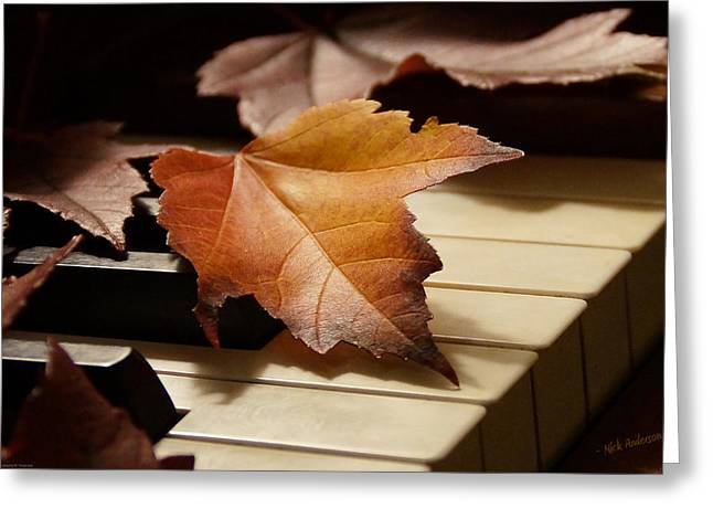 Mick Anderson Greeting Cards - Autumn Piano 13 Greeting Card by Mick Anderson