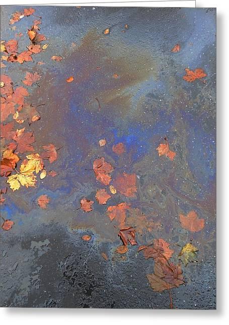 John Stewart Greeting Cards - Autumn Puddle Greeting Card by John Norman Stewart
