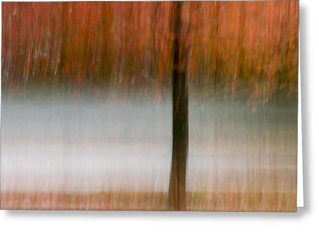 Autumn Prints Greeting Cards - Autumn Rain Greeting Card by Terry DeLuco
