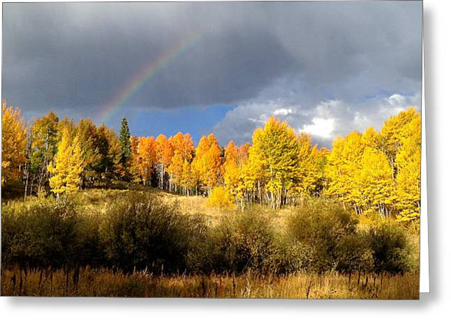 Bob Berwyn Greeting Cards - Autumn Rainbow Greeting Card by Bob Berwyn