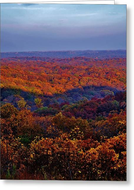 Boonies Greeting Cards - Autumn Rainbow Greeting Card by Michelle McPhillips