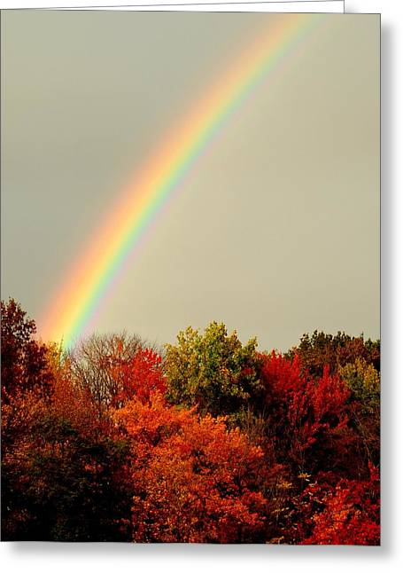 Quite Greeting Cards - Autumn Rainbow Greeting Card by Frozen in Time Fine Art Photography