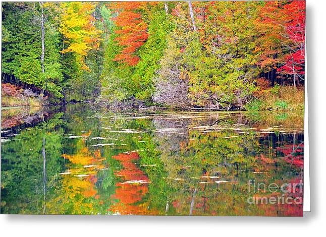 Paintbox Greeting Cards - Autumn Rainbow Greeting Card by Terri Gostola