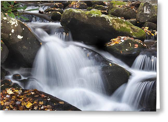 Tennessee River Greeting Cards - Autumn Rapids Greeting Card by Andrew Soundarajan
