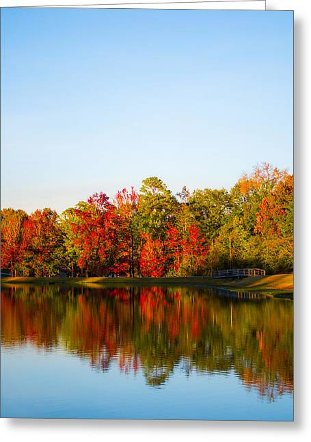 Alabaster Greeting Cards - Autumn Red Greeting Card by Shelby  Young
