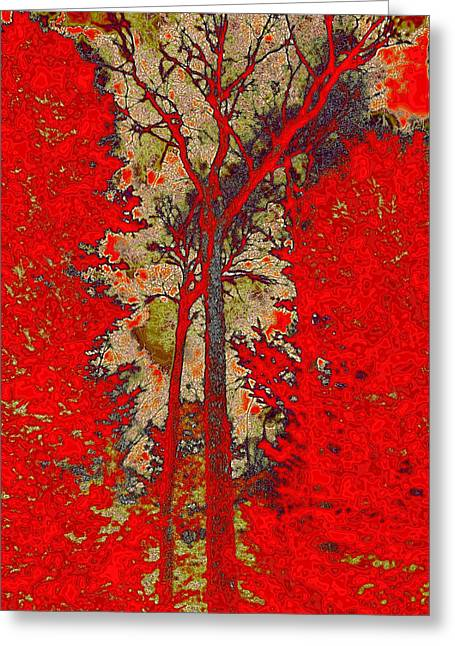 Surreal Landscape Greeting Cards - Autumn Reds Greeting Card by David Patterson