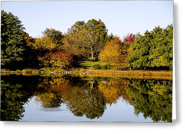 Reflection Of Trees In Lake Greeting Cards - Autumn Reflection in the Garden Greeting Card by Julie Palencia