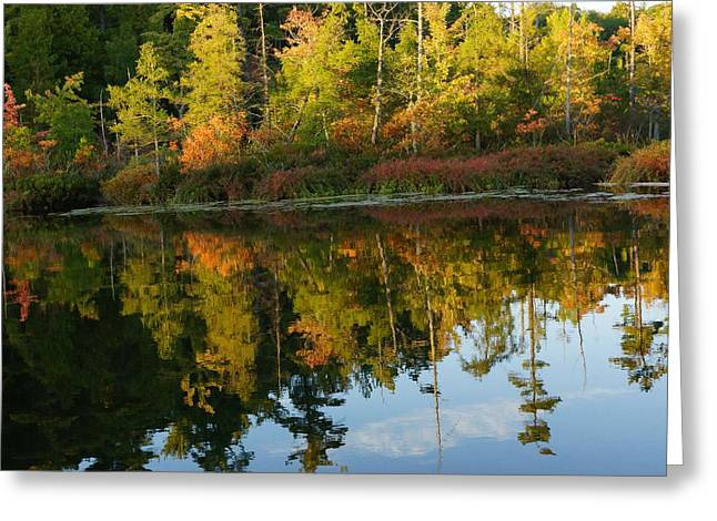 Autumn Road Fractal Greeting Cards - Autumn Reflections In Newaygo County On East Lake Greeting Card by Rosemarie E Seppala