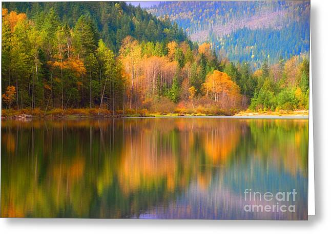 Lanscape Greeting Cards - Autumn Reflections in Revelstoke Greeting Card by Tara Turner