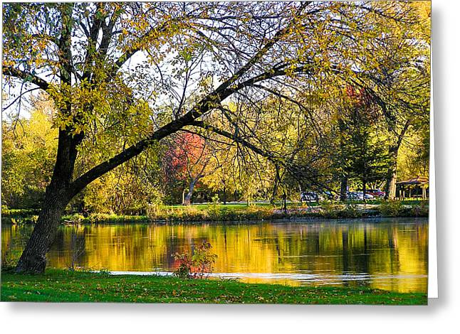 Recently Sold -  - ist Photographs Greeting Cards - Autumn Reflections Iowa City IA Greeting Card by Cynthia Woods