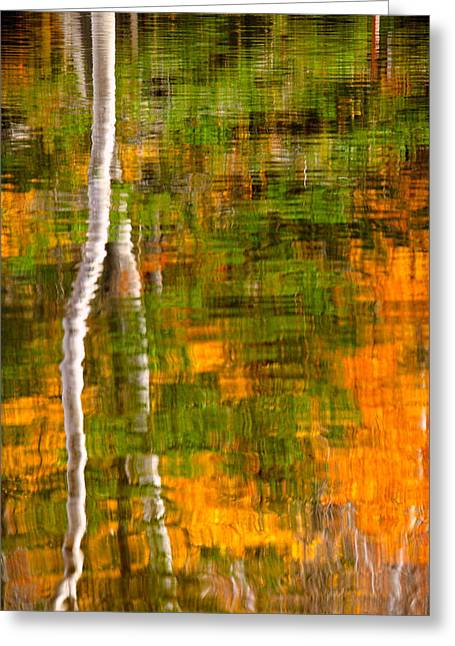 Foliage In White Mountains Greeting Cards - Autumn Reflections Greeting Card by Jeff Sinon