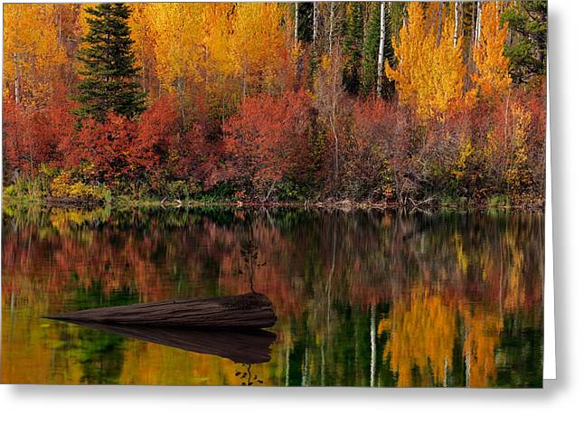 Autumn Reflections Greeting Card by Leland D Howard