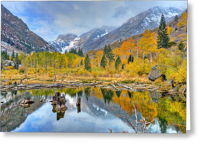 Beauty Mark Photographs Greeting Cards - Autumn Reflections Greeting Card by Mark Whitt