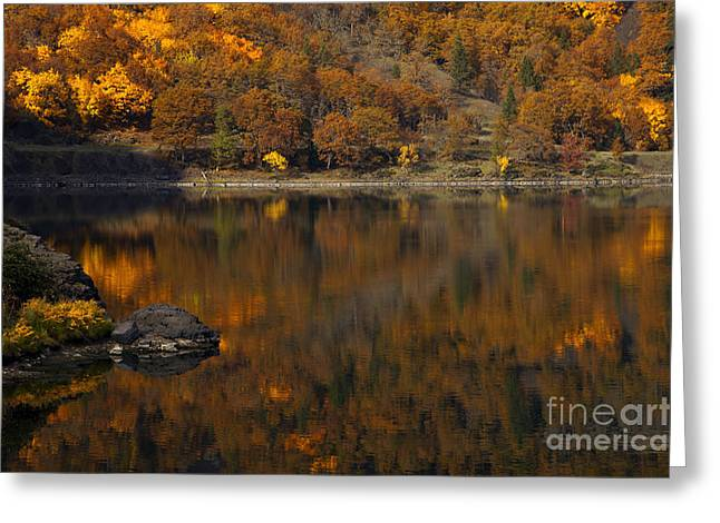 Autumn Reflections Greeting Card by Mike  Dawson