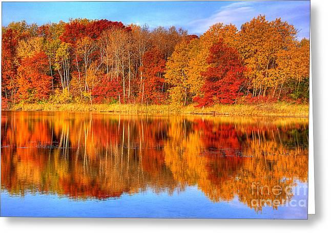 Fall Colors Greeting Cards - Autumn Reflections Minnesota Autumn Greeting Card by Wayne Moran