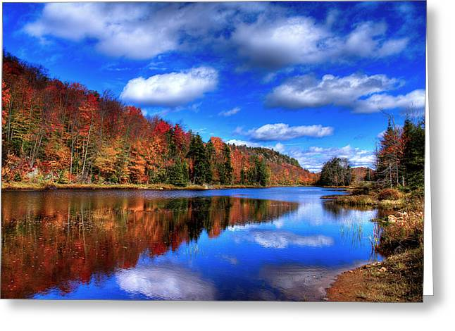 Reflection On Pond Greeting Cards - Autumn Reflections on Bald Mountain Pond Greeting Card by David Patterson