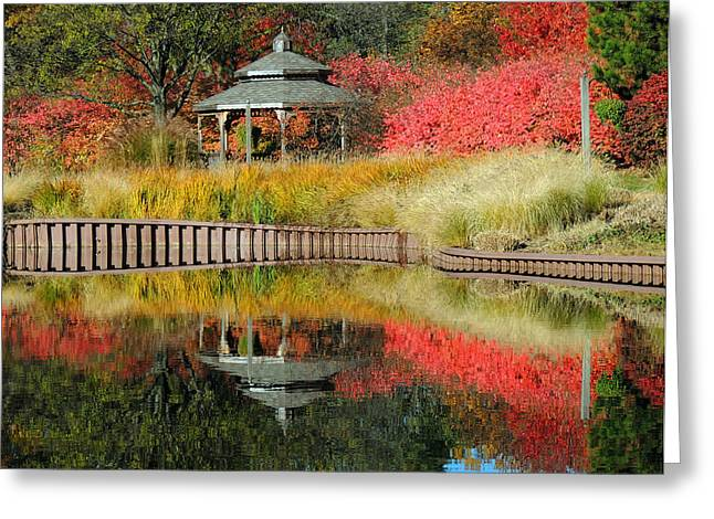 Fall Grass Greeting Cards - Autumn Reflections Greeting Card by Teresa Schomig