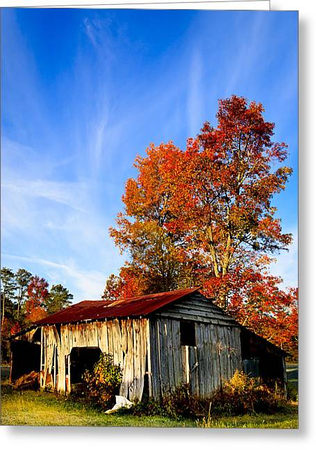 Tin Roof Greeting Cards - Autumn Remembered in North Georgia Greeting Card by Mark Tisdale