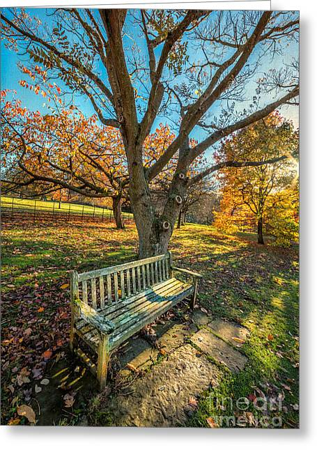 Acer Greeting Cards - Autumn Rest Greeting Card by Adrian Evans