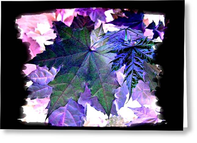 Daydream Greeting Cards - Autumn Reverie Greeting Card by Will Borden