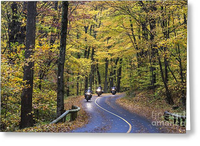 Scenic Drive Greeting Cards - Autumn Ride Greeting Card by John Greim