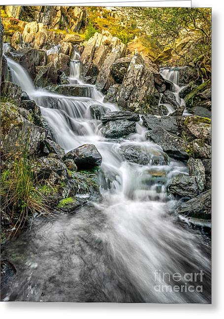 Rapids Greeting Cards - Autumn River Greeting Card by Adrian Evans