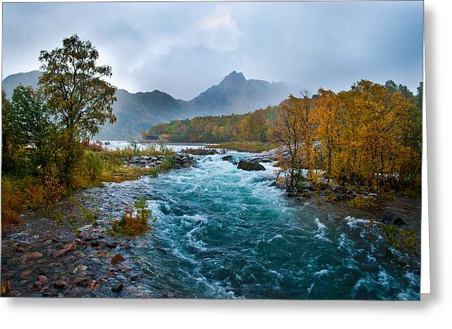 Stormy Weather Greeting Cards - Autumn river I Greeting Card by Frank Olsen