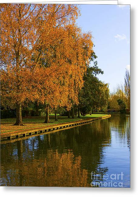 Autumn River Greeting Card by Svetlana Sewell