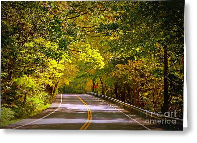 Mountain Road Greeting Cards - Autumn Road Greeting Card by Carol Groenen