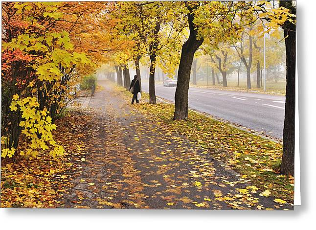 Autumn road Greeting Card by Conny Sjostrom