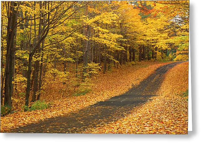 Colorful Photography Greeting Cards - Autumn Road, Emery Park, New York Greeting Card by Panoramic Images