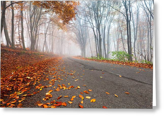 Danube Greeting Cards - Autumn Road Greeting Card by Evgeni Dinev