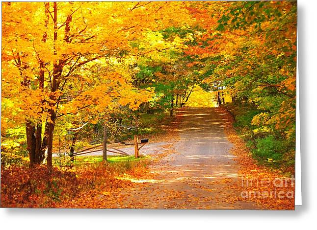 Autumn Road Home Greeting Card by Terri Gostola