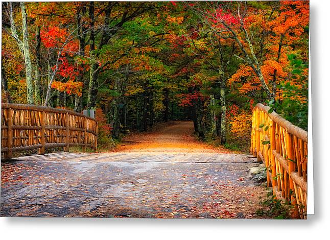 Cedar Fence Greeting Cards - Autumn Road Greeting Card by Jeff Sinon
