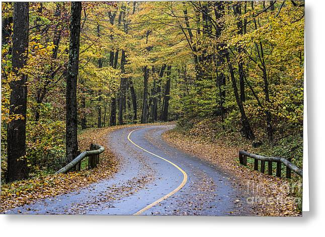 Scenic Drive Greeting Cards - Autumn Road Greeting Card by John Greim