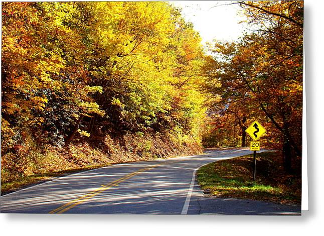 Smokey Mountain Drive Greeting Cards - Autumn Road Greeting Card by Mary Koval