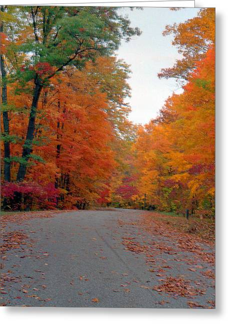 Indiana Autumn Greeting Cards - Autumn Road Owen County Indiana Greeting Card by Paul Price