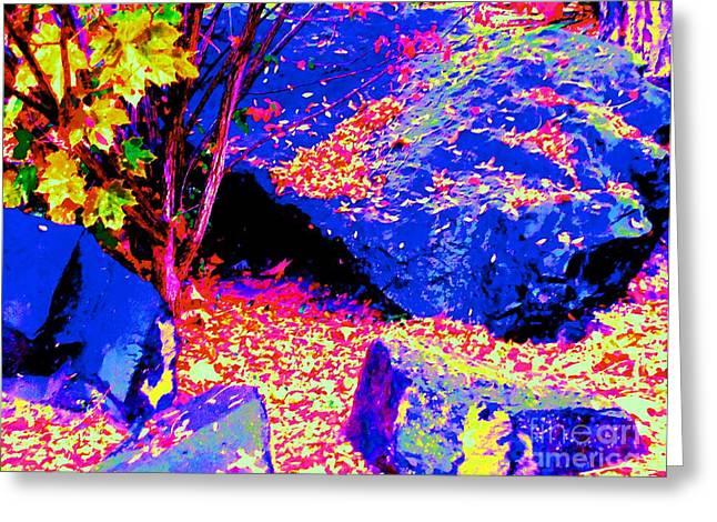 Autumn Rocks Greeting Card by Ann Johndro-Collins